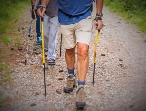 Bastoncini nordic hiking