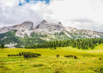 Monte Specie trekking Dolomiti