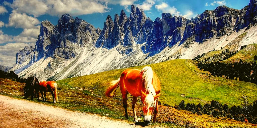 Discover Dolomiti